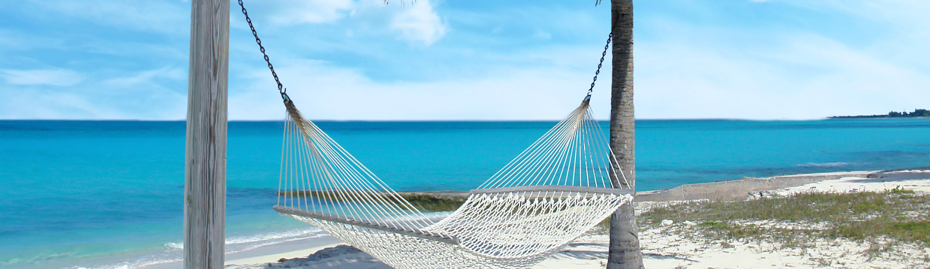 Hammock hanging from beachside palm trees
